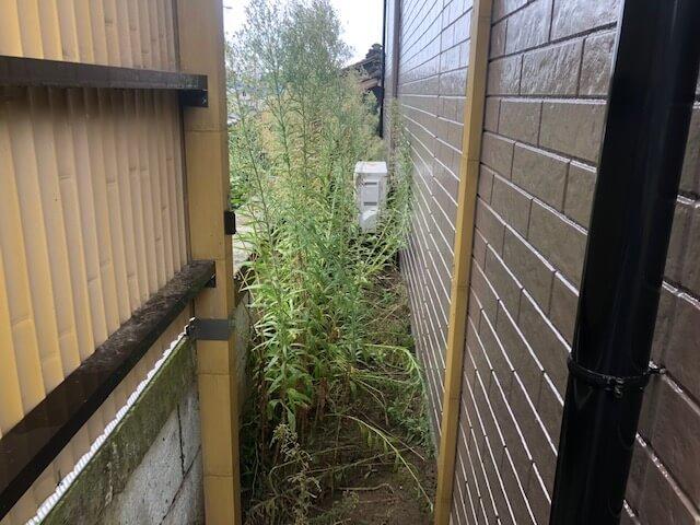 雑草が生えているエアコン室外機の前